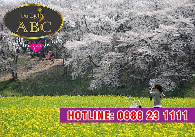 Du Lịch Hàn Quốc - Vọng lâu Bomun Hàn Quốc
