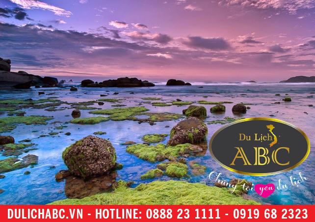 Bãi Biển Ninh Chữ - Một Trong Những Bãi Biển Đẹp Nhất Nước